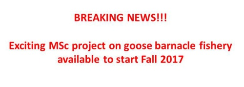 Exciting news