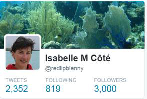 Twitter milestone3 cropped
