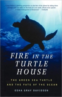 The-Fire-in-the-Turtle-House
